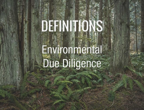 DICTIONARY: Environmental Due Diligence
