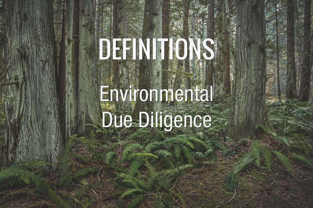 Definition Environmental Due DIligence